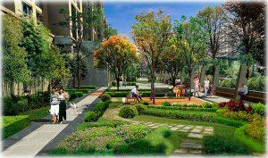proiectare parcuri